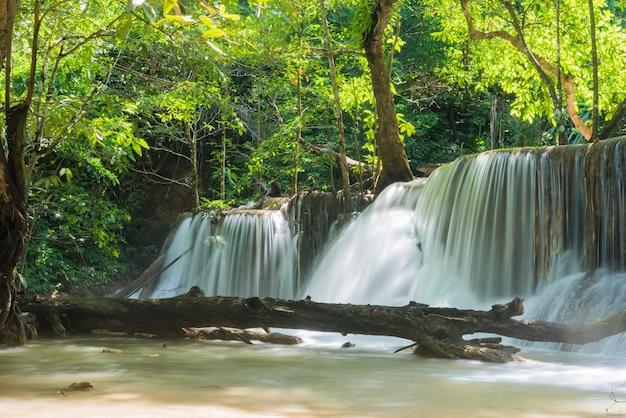 Красивый водопад, лесной фон, пейзаж