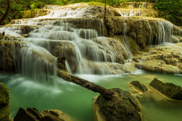 Beautiful waterfall in green forest