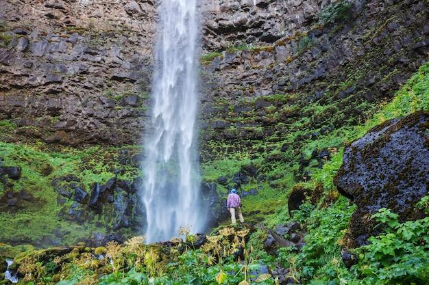 緑の森、オレゴン、米国の美しい滝。