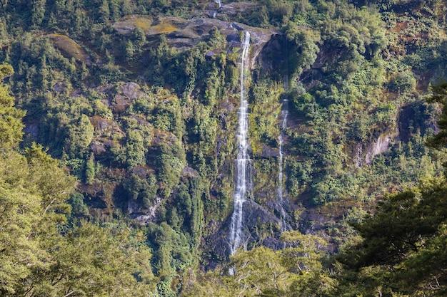 ニュージーランド、緑の熱帯雨林の美しい滝
