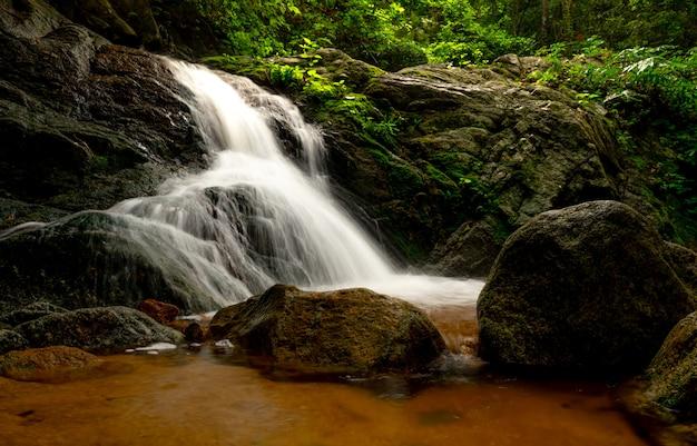 ジャングルの中で美しい滝。