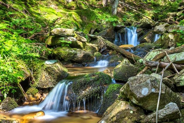 녹색 숲에서 아름 다운 폭포입니다. 모션 워터 캐스케이드