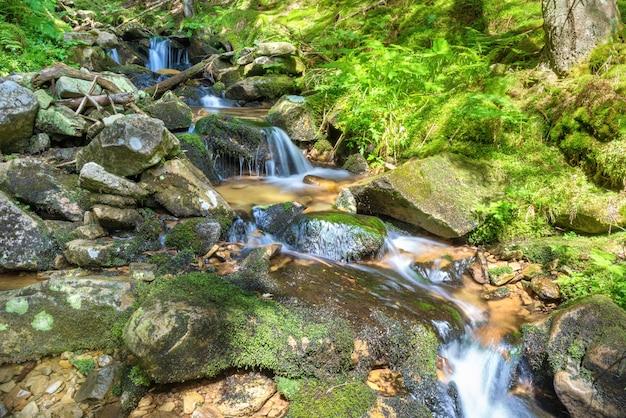 Красивый водопад в зеленом лесу. каскад движущейся воды