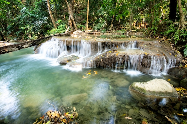 Красивый водопад в тройничном лесу.