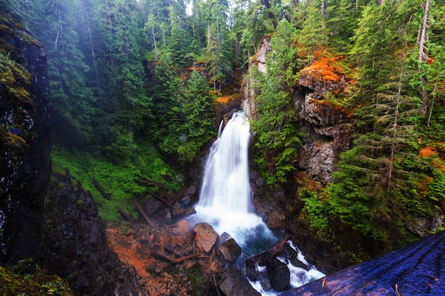 Красивый водопад на острове ванкувер, канада