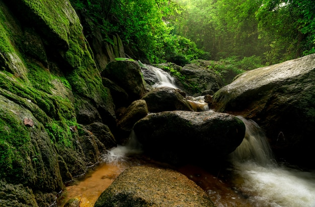 Beautiful waterfall in jungle. waterfall in tropical forest with green tree and sunlight