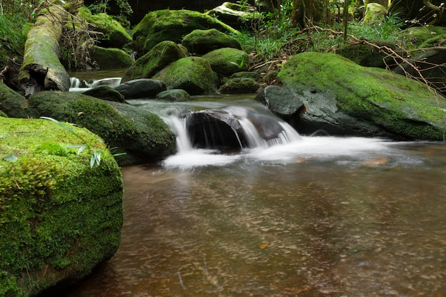 Beautiful waterfall landscape. waterfall in forest.