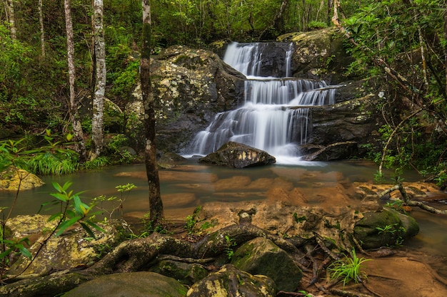 Beautiful waterfall in phu rua national park, thailand.