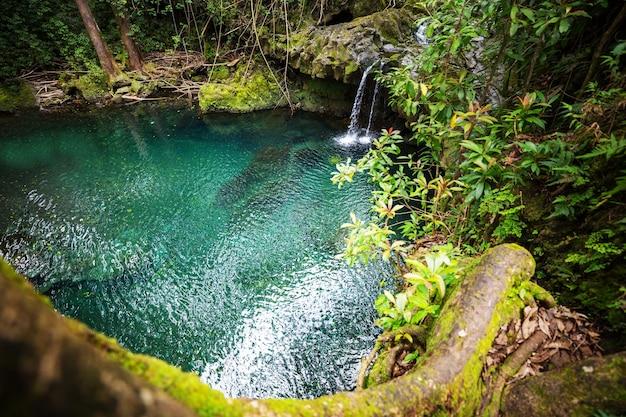 Beautiful waterfall in tropical rainforest in hawaii island, usa