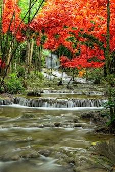 Beautiful waterfall with rainbow in the deep forest, pha tat waterfall, kanchanaburi province, thail