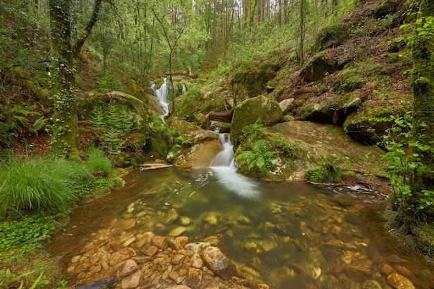 スペイン、ガリシアの地域の川によって形成された美しい滝。