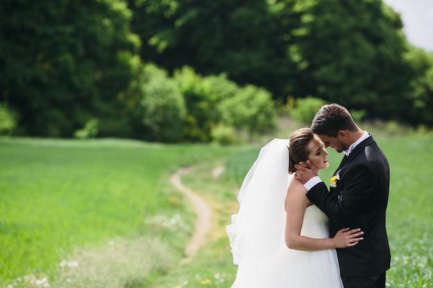 美しい結婚式のカップルが緑の野原を歩いています
