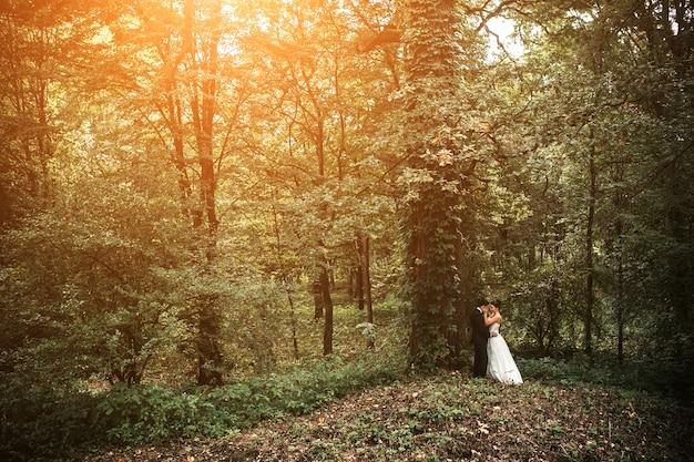 森でポーズをとって美しい結婚式のカップル