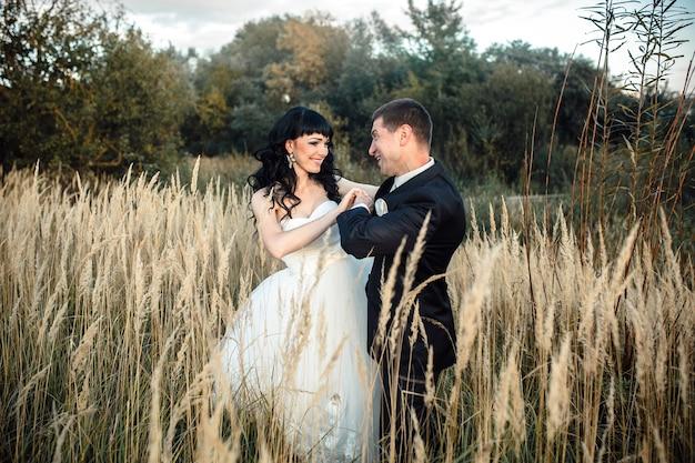 倒れた木の森に座っている美しい結婚式のカップル