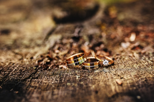 Beautiful wedding rings lie on wooden surface