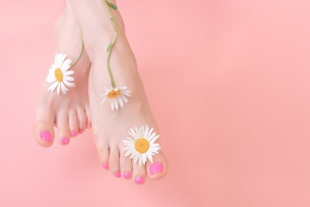 ピンクの背景に明るいペディキュアで美しく手入れされた足。カモミールの花の装飾。スパペディキュアスキンケアコンセプト