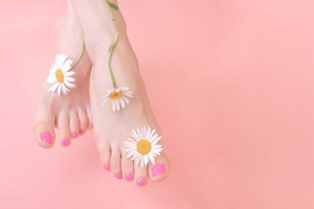 Beautiful well groomed feet with bright pedicure on a pink background. chamomile flower decoration. spa pedicure skincare concept