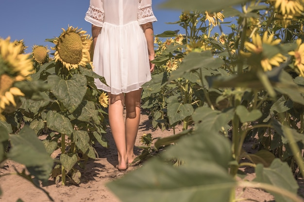 Красивые ухоженные ноги молодой женщины в солнечном воздушном фоне подсолнухов