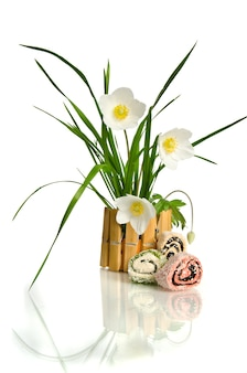 Beautiful white flower in the basket isolated on white