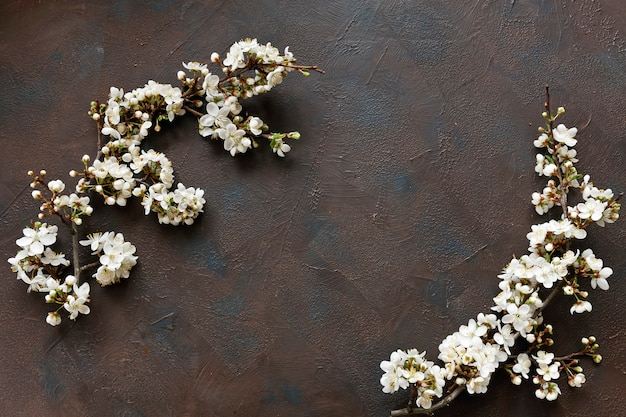 Beautiful white flowering cherry tree branches on dark table background