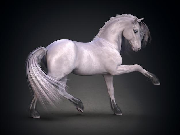 Beautiful white horse 3d rendering