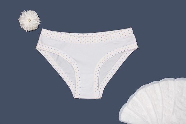 회색 배경에 생리대가 있는 아름다운 흰색 팬티. 여성 속옷 세트입니다. 평면도.
