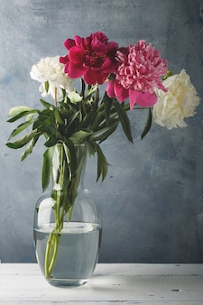 Beautiful white, purple and pink peony flowers in a glass vase.