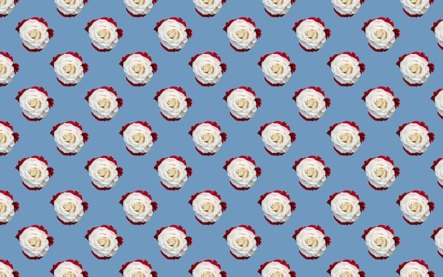 Beautiful white rose flowers. blooming roses seamless pattern. floral natural background.