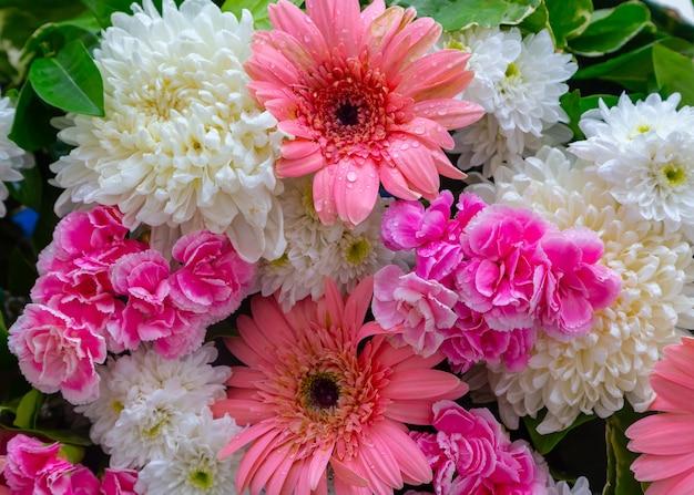Красивая белая роза для свадебной сцены