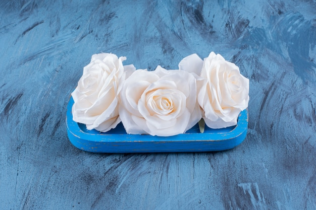 Beautiful white roses on blue plate on blue.