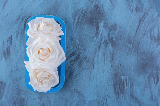 青の青いプレートに美しい白いバラ。