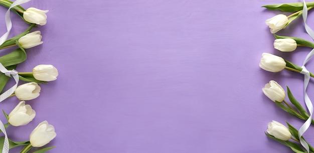 Красивые белые тюльпаны на фиолетовом