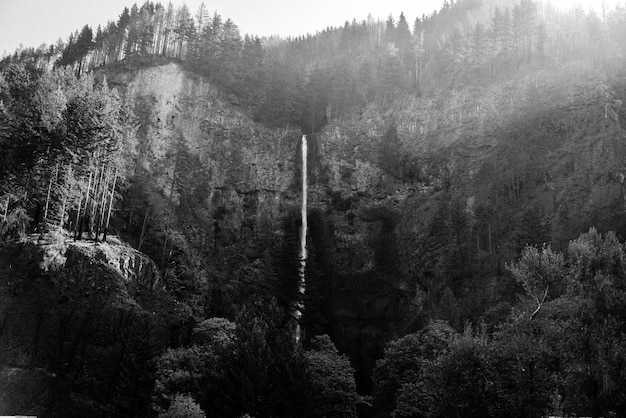 Beautiful wide long shot of a tall thin waterfall in the woods at multnomah falls, united states