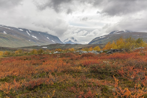 Beautiful wild nature of sarek national park in sweden lapland with snow capped mountain peaks
