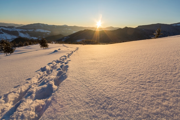 Beautiful winter christmas landscape. human footprint track path in crystal white deep snow through empty field, woody dark hills on horizon at sunrise on clear blue sky copy space