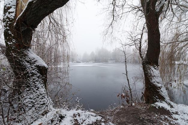 霧と冬の風景と美しい冬の湖