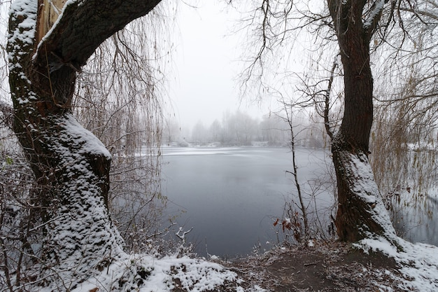 Beautiful winter lake with fog and winter landscape