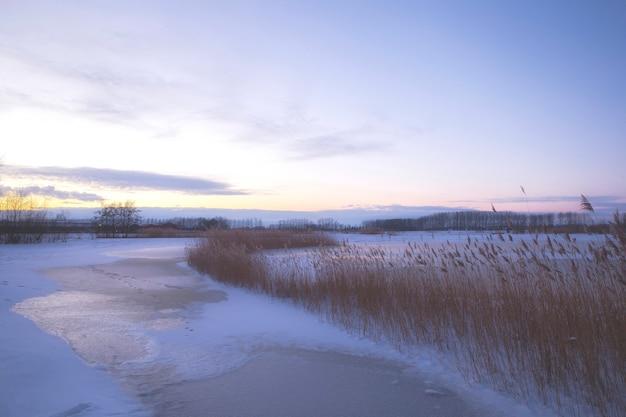 Красивый зимний пейзаж на закате с туманом и снегом, покрывающим сельхозугодья и реку нидерланды