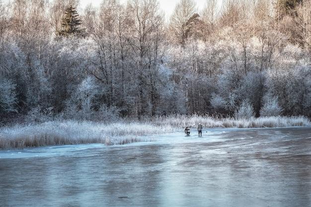Красивый зимний пейзаж с замерзшим озером и белыми деревьями в