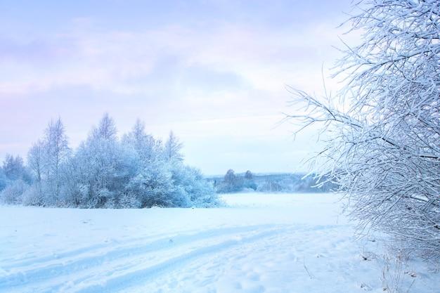晴れた凍るような日に地平線上に白い雪と森のフィールドと美しい冬の風景。