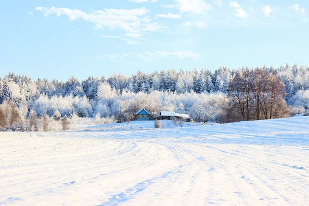Beautiful winter landscape with forest, trees