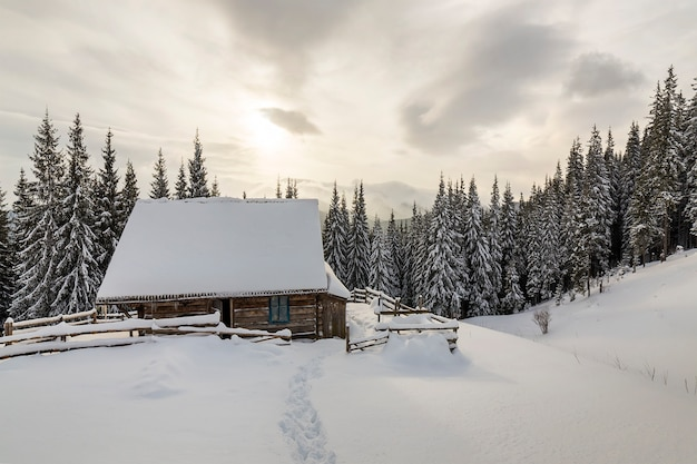 Beautiful winter landscape. wooden shepherd hut on mountain snowy clearing among pine trees on cloudy sky copy space . happy new year and merry christmas card.