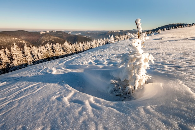 Beautiful winter panorama with fresh snow.