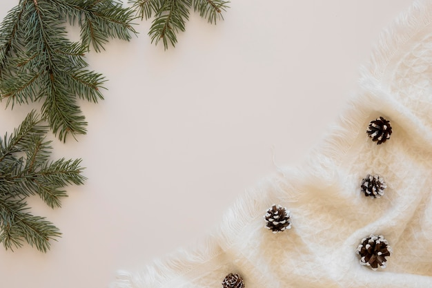 Красивые зимние сосновые шишки на вид сверху ткани