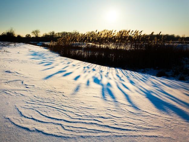 아름다운 겨울 풍경, 눈이 일몰 동안 강변을 덮었습니다. 얼어 붙은 호수와 배경에 갈 대