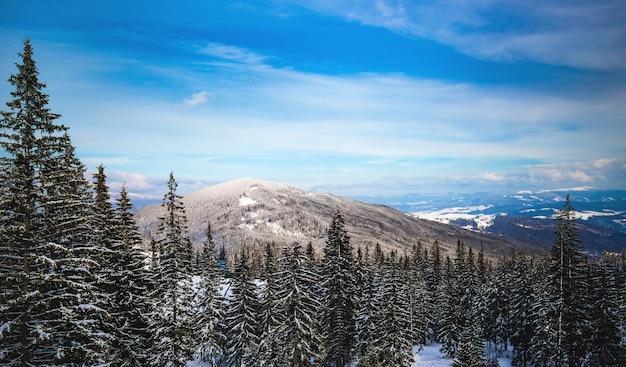 Красивый зимний солнечный пейзаж зимнего леса и гор утром. концепция горнолыжных курортов и заповедных северных мест. copyspace