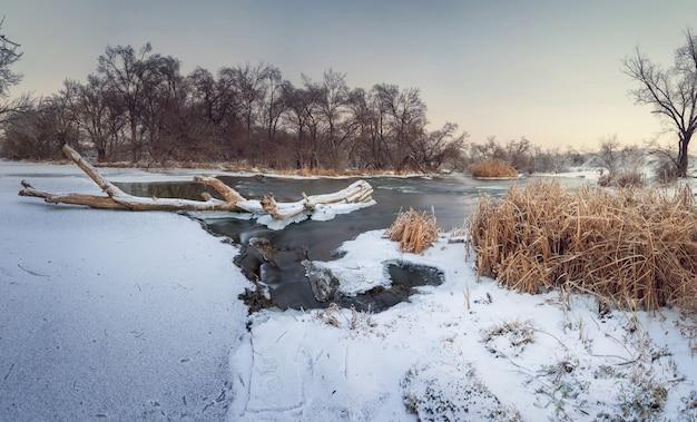 Krinka 강에서 아름 다운 겨울 석양입니다. 식물, 나무와 푸른 하늘입니다. 황혼. 우크라이나의 숲