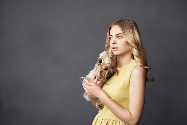 美しい女性小さな犬ペット楽しい孤立した背景