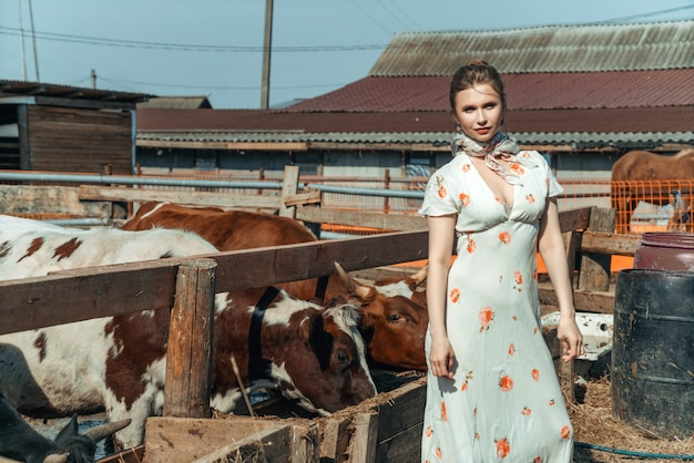 A beautiful woman on a farm feeds the cattle with hay