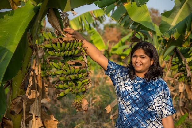 美しい女性の農家は、有機農場で木のバナナ果実を調べたり、観察したり、保持したりしています。農業農場の先進農家の笑顔。